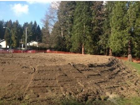 Sutherland Secondary Schoolyard Market Garden Construction