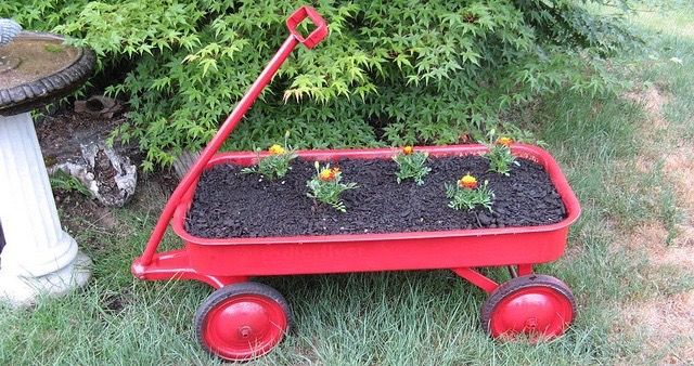 Fun Community Garden Ideas - Planting Beds