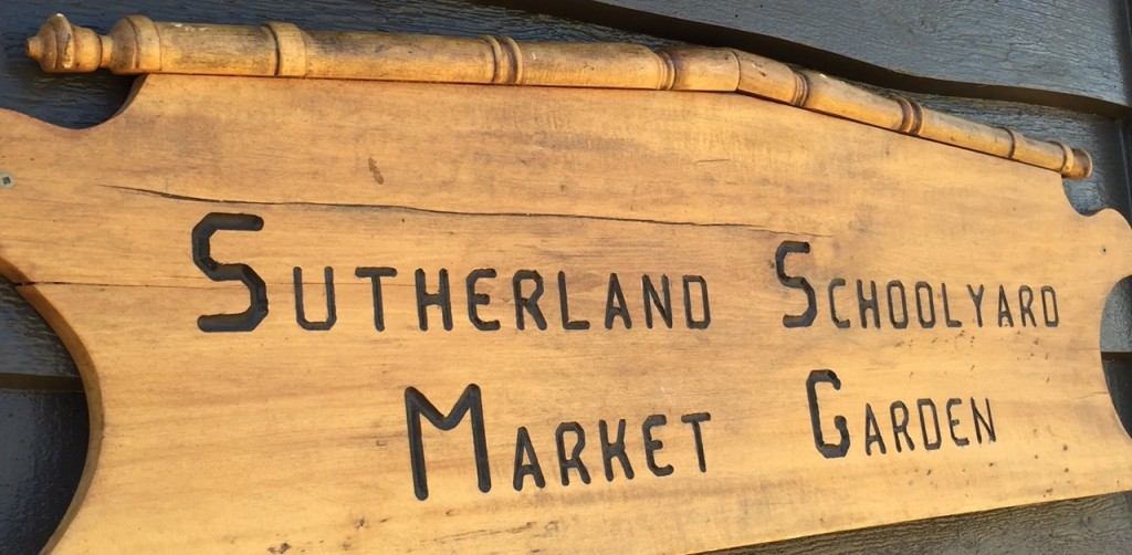 Sutherland-Secondary-School-Market-Garden-Shed