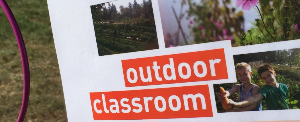 Outdoor Learning Experiences for the Summer