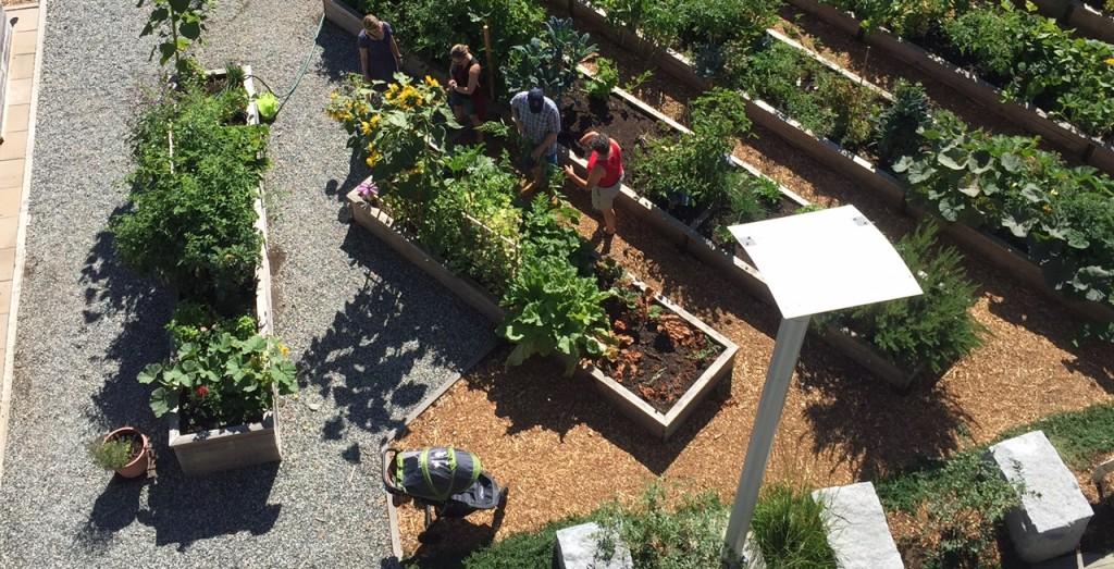 community garden concept a little free library for kids. Black Bedroom Furniture Sets. Home Design Ideas