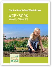 Activity Workbook for Grades K-1