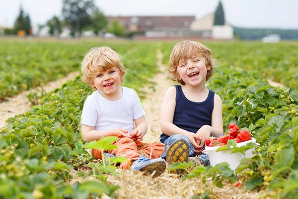 Children enjoying planting and gardening