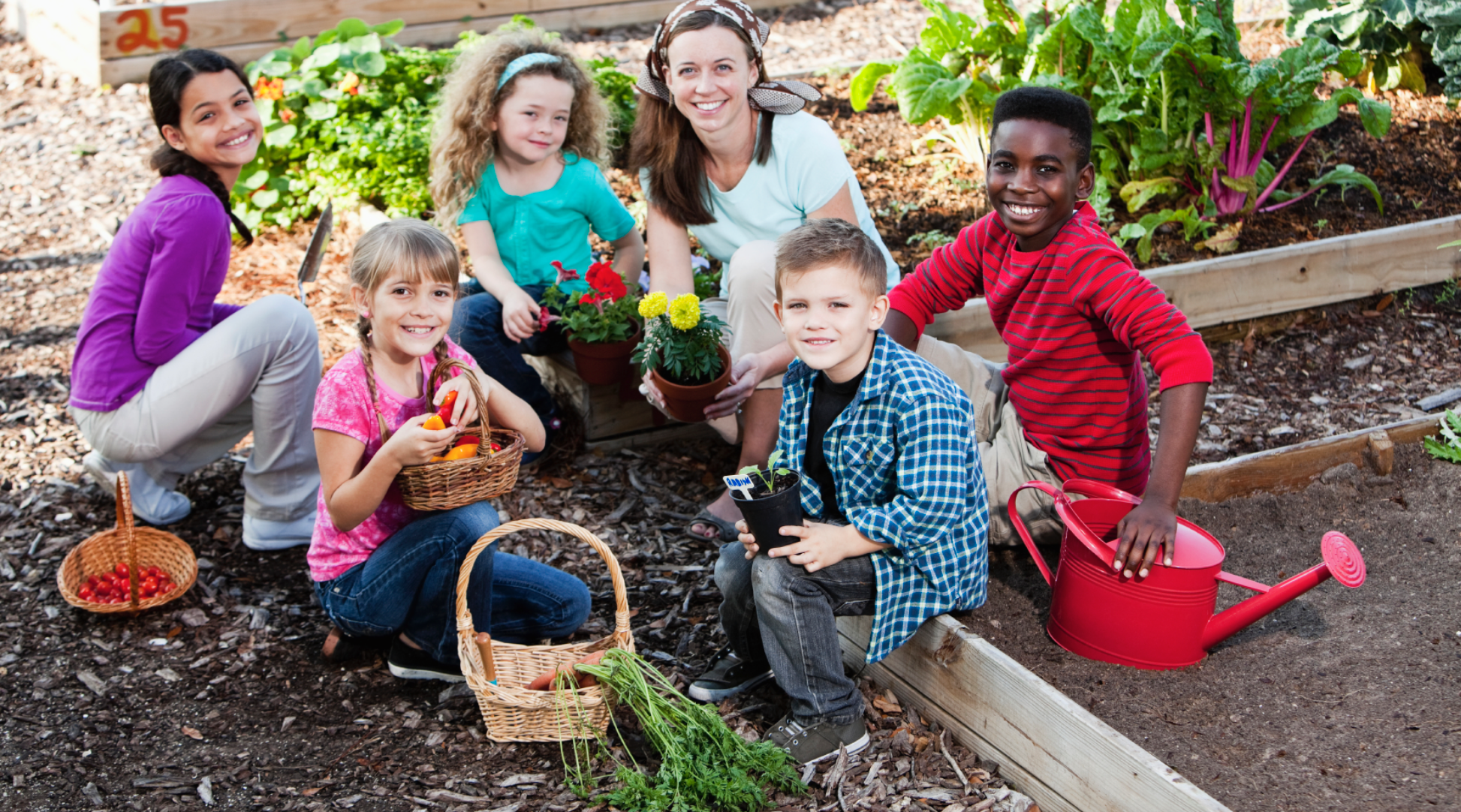 a sustainable way of gardening community gardens essay Sustainable communities essay two and they plan to respond in an innovative way using technology to promote a sustainable community garden.