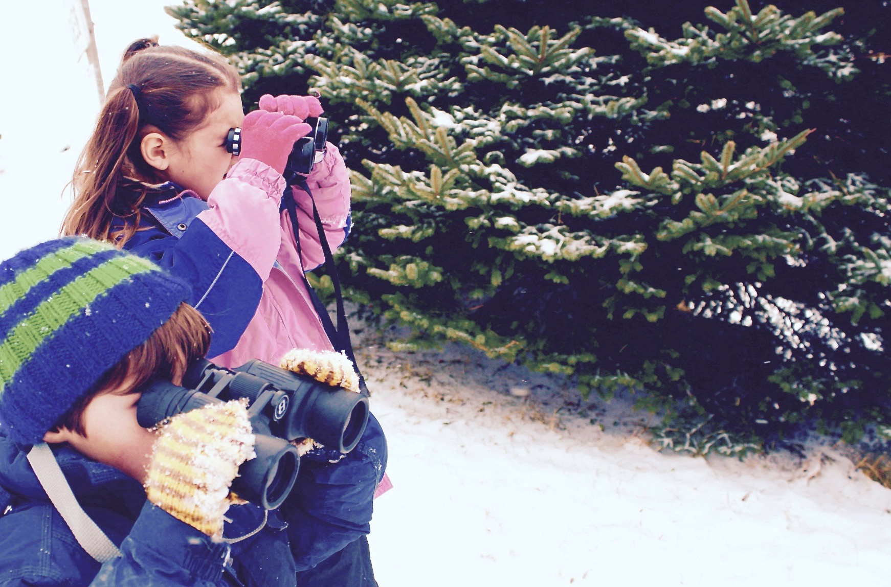 Winter Outdoor Learning Experiences Kids