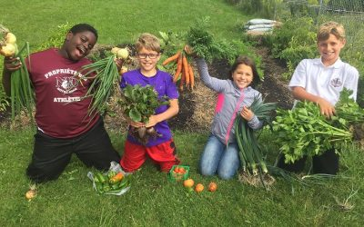 École Sainte-Marguerite-Bourgeoys: Natural Gardening Principles for a Stronger & Healthier School