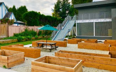 A New Learning Garden Grows at Deer Lake School