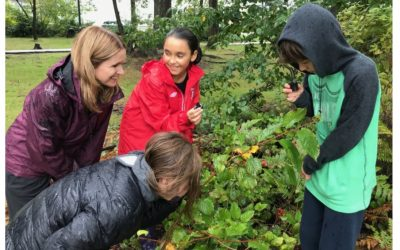 Encompass School Garden: When Online Learning Underscores the Importance of Outdoor Experiences