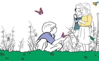 Trouve les pollinisateurs !